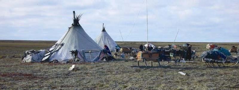 Nenets_nomads'