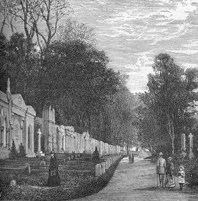 Thomas Browne's Hydriotaphia: Early Modern Gothic Non