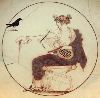 Apollo_black_bird_AM_Delphi_8140